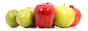 frutta_testata_catalogo